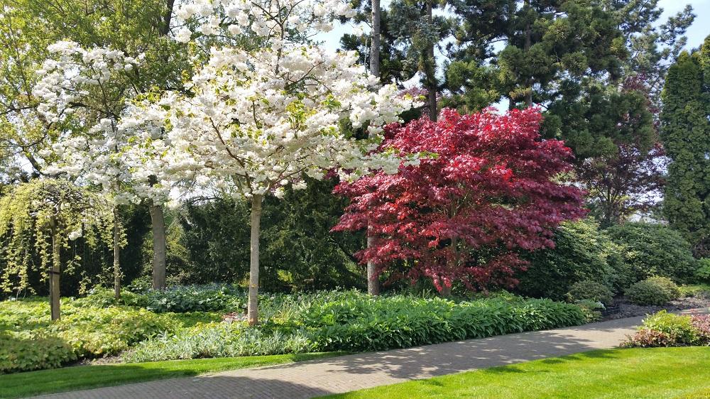 Engelse Landschapsstijl Tuin : Tuin engelse landschapsstijl hoveniersbedrijf terlouw
